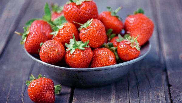 Como plantar morango e obter excelentes frutas para venda e consumo