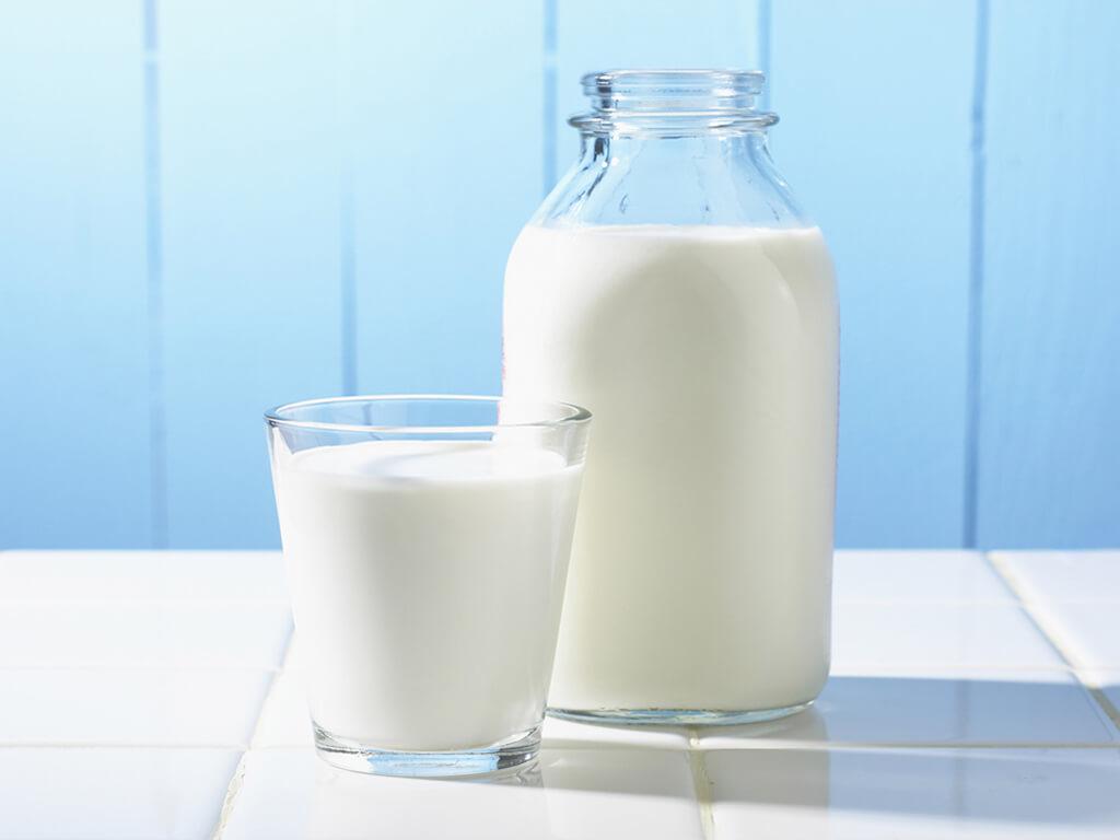 composição do leite