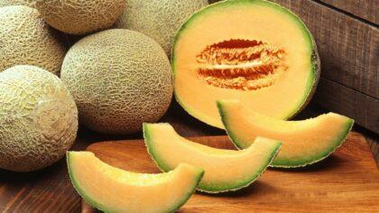 Melão cantaloupe, de casca enrugada, tem origem na Índia e África