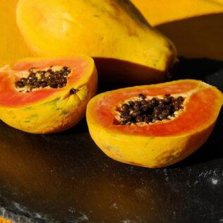 Descubra como plantar mamão para obter frutas com qualidade e volume