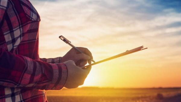 Empresa rural realiza atividades agrícolas visando lucro
