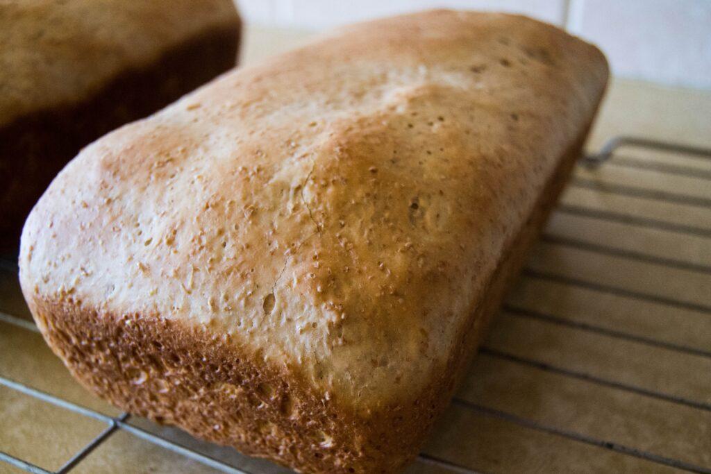 Pão Recife