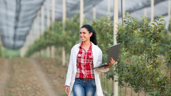 Cursos com certificado permitem trabalhar melhor no campo
