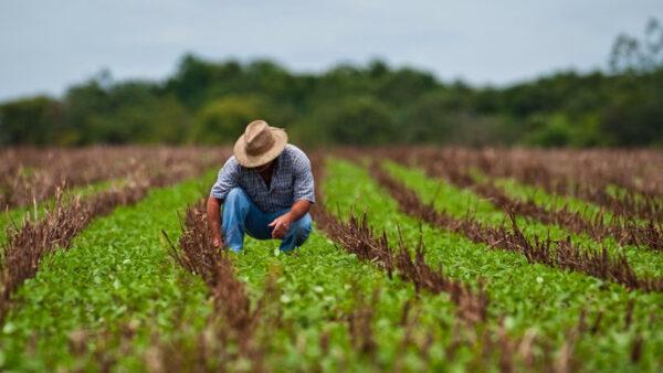 Cursos de agronegócio transformam a vida de quem trabalha no campo