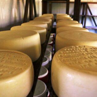 Queijo minas padrão também é conhecido como queijo mineiro