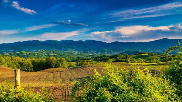 Meio rural é o ambiente que se refere ao campo e natureza