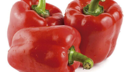 Pimentão vermelho é repleto de betacaroteno e antioxidantes