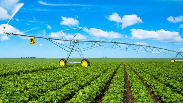 Pivô central é um sistema de agricultura para aspergir água circularmente