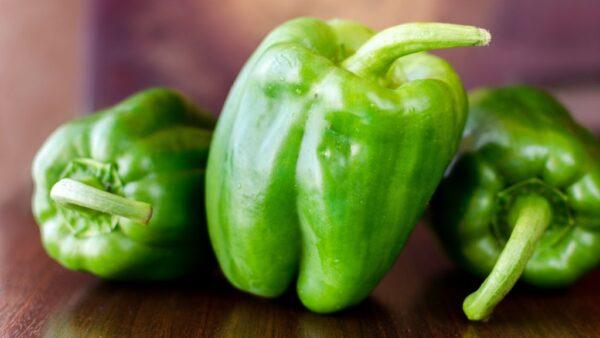 Pimentão verde é fruto rico em fibras e vitamina C e muito saboroso